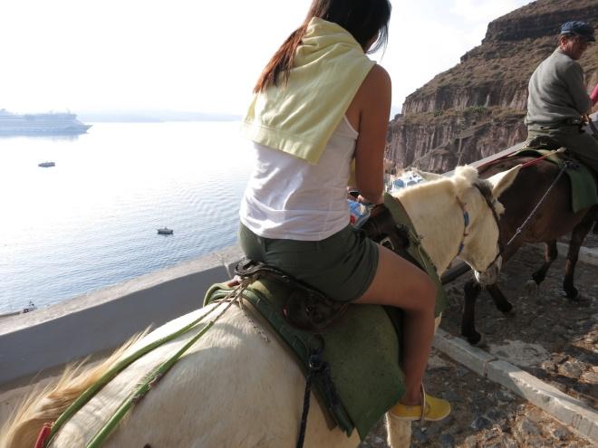 I rode a donkey once!