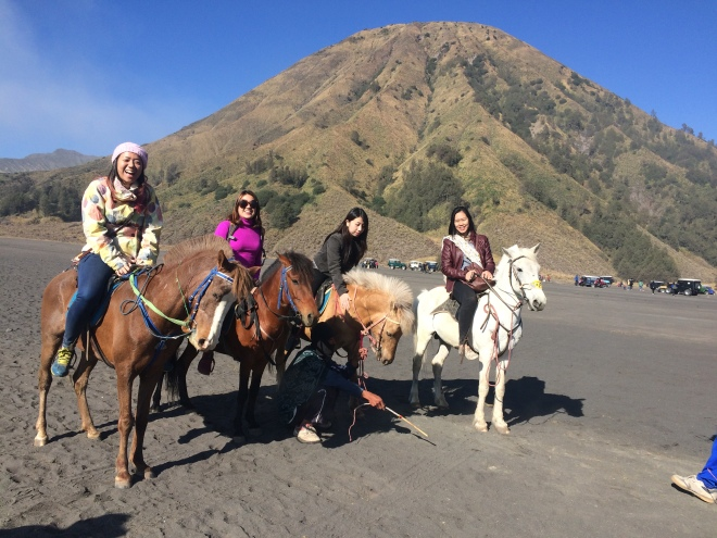 All of us with our horses. Cutttee!