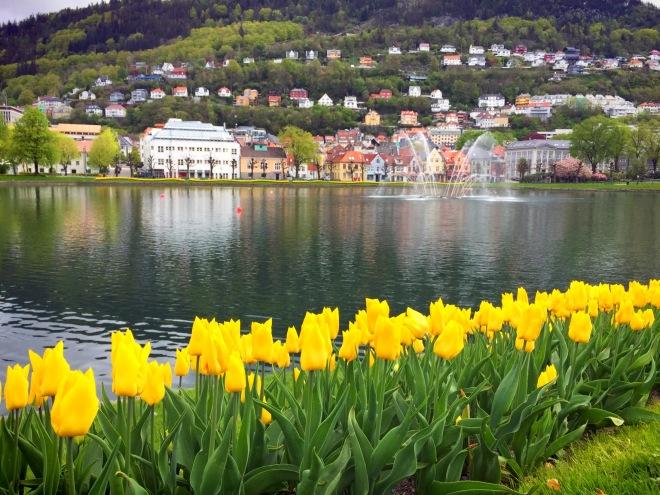 The beautiful Bergen.