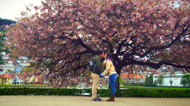 Kissing under Sakura Tree. <3